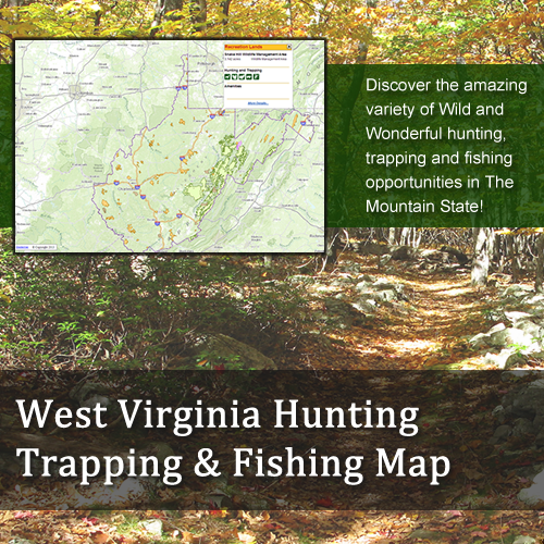 Hunting and Fishing Application Image